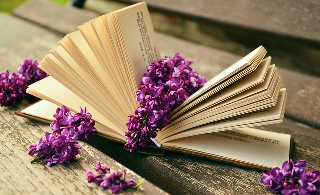 book-759873_640