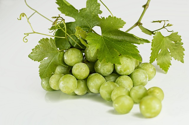 grapes-582207_640