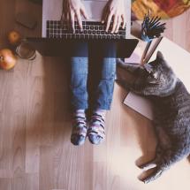 英語でネコ自慢できる「猫」に関する英語表現