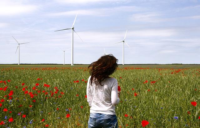 wind-turbines-836619_640